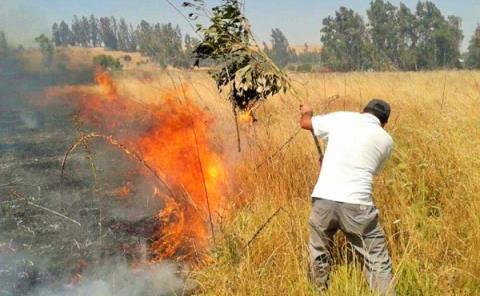 Multan a los incendiarios