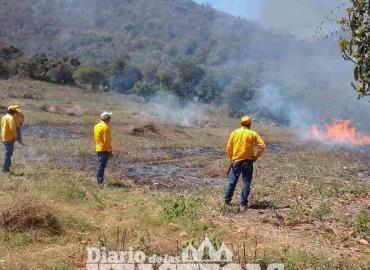 Descartan prácticas de quema agrícola