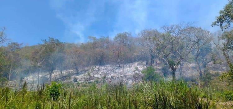 Ardió la Huasteca Sur