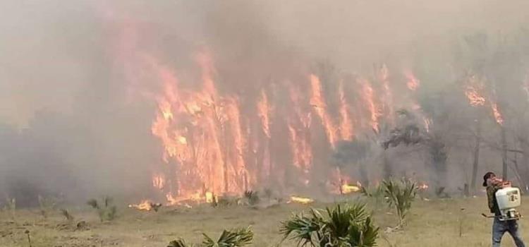 Brigadistas no saldrán a combatir incendios