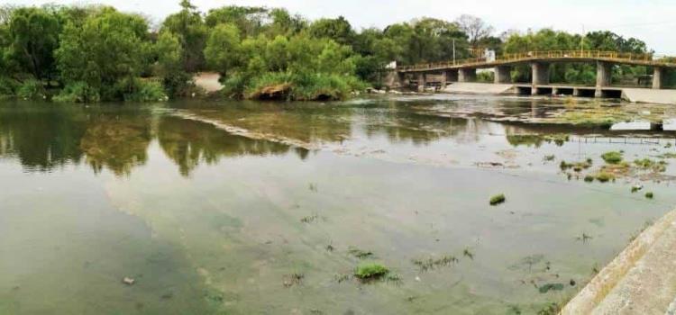 Recuperó nivel de agua el río Valles