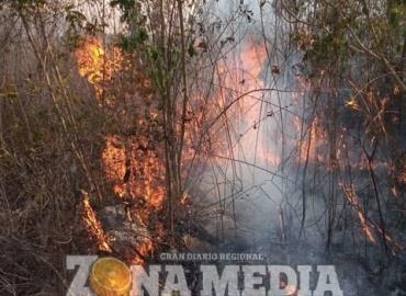 Fue controlado el incendio forestal