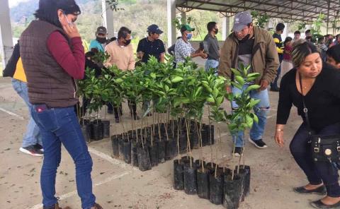 Desarrollo Rural dio apoyo a productores