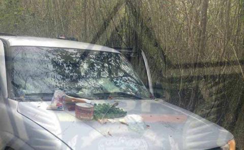 Confiscaron armas y vehículos