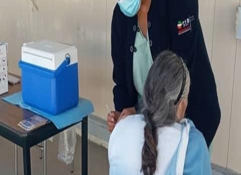 Vacunarán a adultos contra el Coronavirus