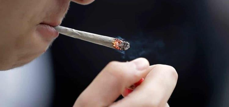 Fumarán 'mota' en las escuelas