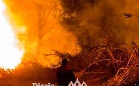 Incendio en parcela