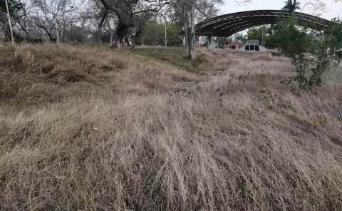 Parque Tayde un riesgo de incendio