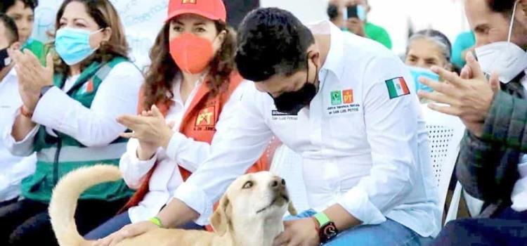 """Protección animal será prioridad en el gobierno del """"Pollo"""""""