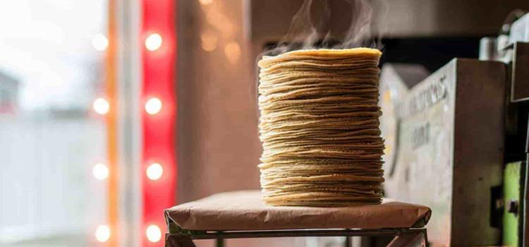 Alcanza la tortilla su mayor precio