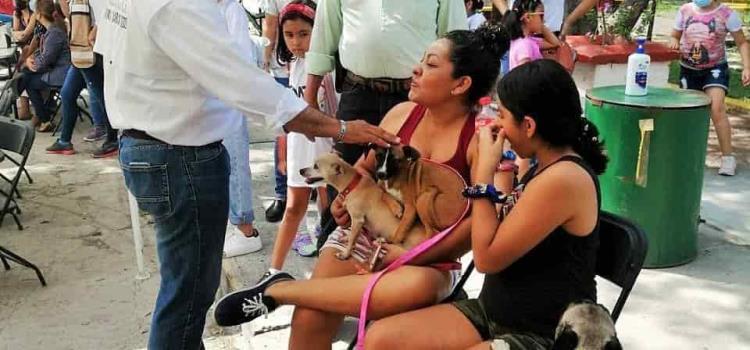 Casa asistencial de animales en Valles
