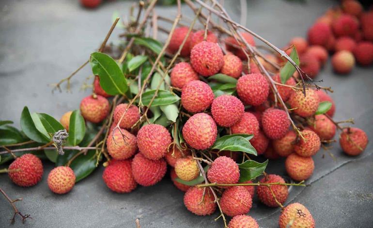 Litche más que una simple fruta