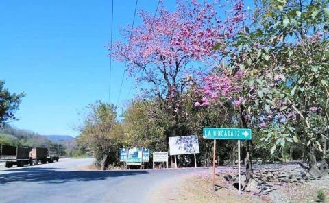 Se reconstruirá la Valles-El Naranjo