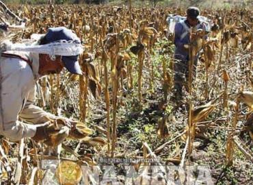 Campesinos molestos con gobierno de AMLO