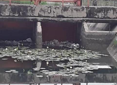 Inconscientes continúan contaminando canales