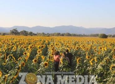 Inaes respalda los cambios de cultivos