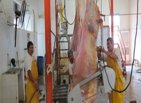 Coepris supervisa carnicerías en ZM