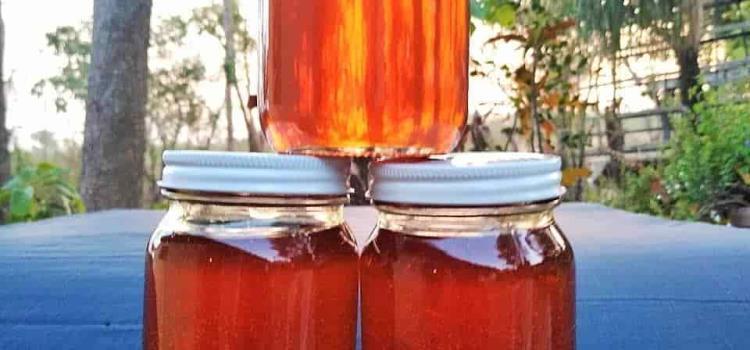 Apicultores inician la cosecha de miel