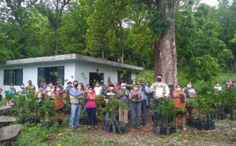 Iberdrola entregó plantas de naranjo