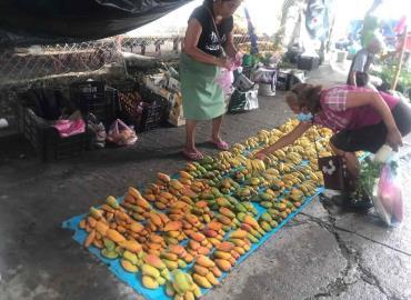Orden en mercado urge para Tanquián