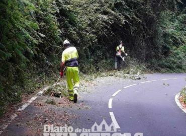 Da mantenimiento a carretera federal