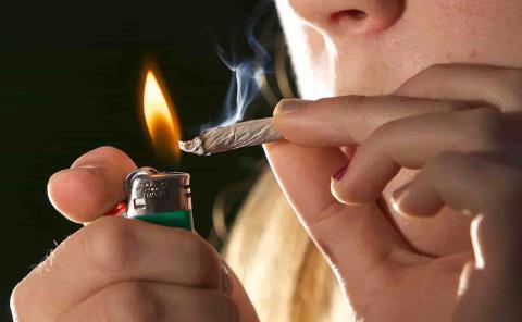 Cofepris dará los permisos para fumar mota