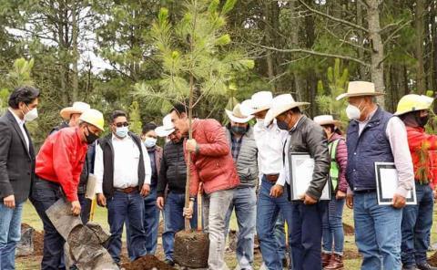 Gobierno Estatal entregó certificación a silvicultores