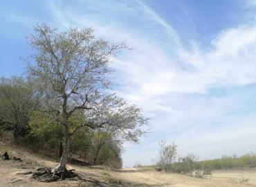 Sequía moderada en el municipio