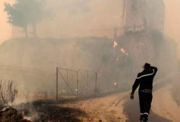 65 muertos por incendios