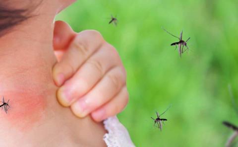 Huasteca con dengue