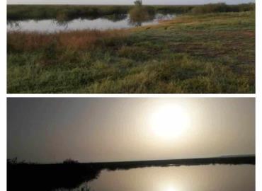 """""""Grace"""" revivió a la laguna Marland"""