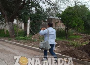 Combaten el dengue y zika