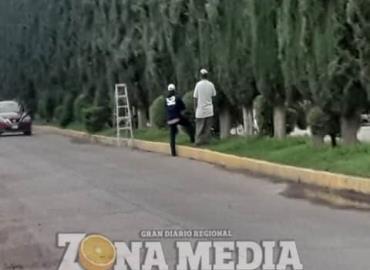 Falta seguridad al podar árboles