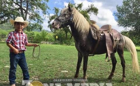 Robertito dio un paseo a caballo