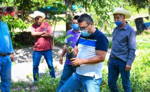 Inició Alcalde campaña de reforestación