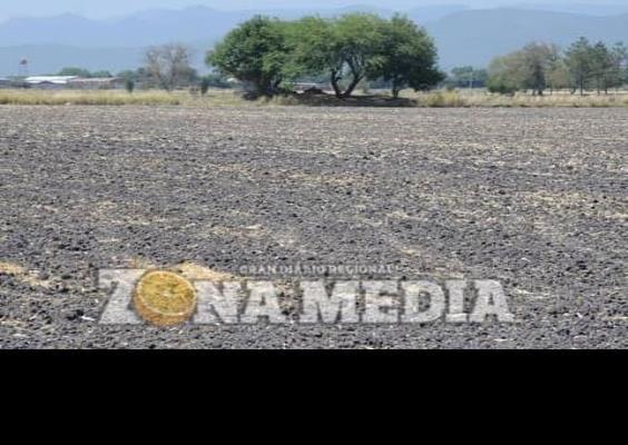 Tierras agrícolas no tienen apoyos