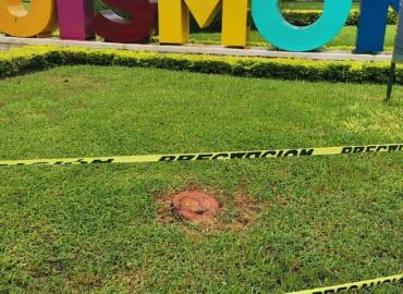 Gobierno Municipal agrava deforestación