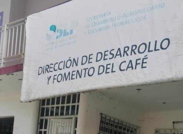Becarios fuera de proyecto cafetalero