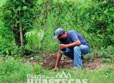 Refuerza Jornada de Reforestación en Platón