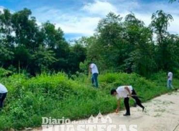 Continúan gestión para reforestación
